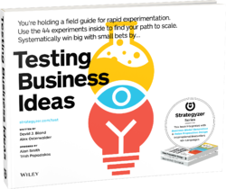 Testing-Business-Ideas-2